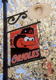 Lamp post banner at Camden Yards in Baltimore, Maryland