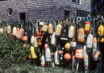 Buoys -- aka bumpers, markers and floaters