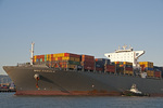The container ship MSC Fabiola in the Oakland (California) Estuary.
