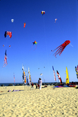 KITES FLYING ON THE OUTER BANKS