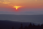SUNRISE IN THE DOLLY SODS WILDERNESS