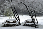 PICNIC TABLES IN WINTER (PART OF 4-SEASON SET)