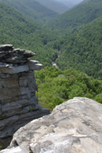 Lindy Point Overlook at Blackwater Falls State Park in WV