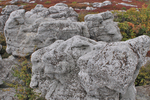 Rock formations in the Dolly Sods Wilderness in West Virginia