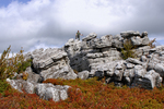 Lady on rock formation in the Dolly Sods Wilderness