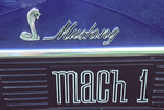 Ford Shelby Cobra Mustang Mach 1 1970