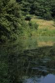 Pond and pond edge