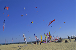 Kites flying in the Outer Banks