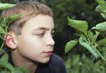 Boy looking at caterpillar
