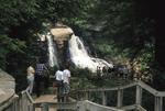 Tourists at Blackwater Falls