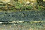 Coal seam
