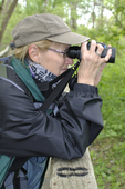 Lady birding along boardwalk at Magee Marsh (Warbler Capitol of the World) along Lake Erie