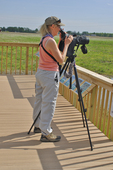 Lady birder at the Boss viewing platform in the Ottawa National Wildlife Refuge near/along Lake Erie in OH