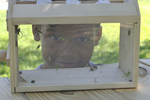 Boy looking through the bug box he built.