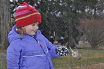 Little girl looking at female House Finch trapped in mist net