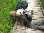 Grandfather and grandson looking at St. John's wort...kneeling/laying on wetland bridge along the South Prong Trail in the Dolly Sods Wilderness in WV