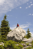 Young boy sitting atop a large boulder at the Bear Rocks WV Nature Conservancy Preserve on Dolly Sods