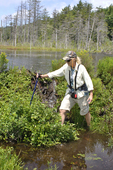 Lady hiker crossing water flowing from beaver dam