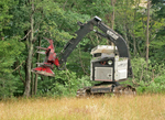 Tree cutting machine in timbering operation