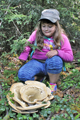 Girl looking at a Berkeley's Polypore fungus