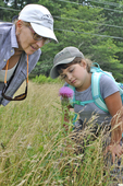Mother and daughter looking at a Common Thistle flower