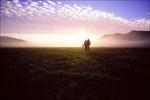 Arctic Morning Hike