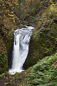 Oneonta Falls, Columbia River Gorge National Scenic Area, OR