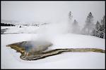 Upper Geyser Basin, Yellowstone National Park, MT