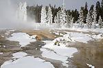 Monument Geyser Basin, Yellowstone National Park, WY