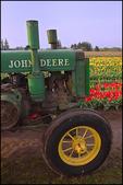 Old John Deere Tractor in Tulip Field, Wooden Shoe Bulb Company, Woodburn, OR