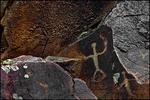 Petroglyphs at Buffalo Eddy Crossing on the Snake River, Nez Perce National Historical Park, WA