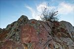 Petroglyphs, Buffalo Eddy Crossing of the Snake River, Nez Perce National Historical Park, WA
