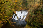 Lower North Falls, Silver Falls State Park, OR