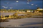 Harbor Scene, Bandon, OR