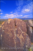 Mogollon petroglyphs in the desert below Sierra Blanca Peak