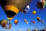 Hot air balloons rising in morning light at the International Balloon Fiesta