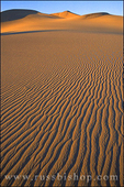 Evening light on sand patterns and dunes at Mesquite Flat, Death Valley National Park, California