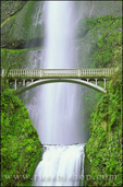 Multnomah Falls and bridge, Mount Hood National Forest, Columbia River Gorge National Scenic Area, Oregon