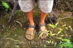 Child's muddy sandals after hiking the Pihea Trail into the Alaka'i Swamp, Koke'e State Park, Kauai, Hawaii