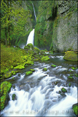 Wahclella Falls on Tanner Creek, Columbia River Gorge National Scenic Area, Oregon