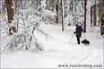 Backcountry skier pulling sled through snow covered forest, Los Padres National Forest, California