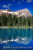 Morning light on Mount Odaray reflected in Lake O'Hara, Canadian Rockies, Yoho National Park, British Columbia, Canada