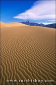Morning light on dune patterns under the Sangre de Cristo Mountains, Great Sand Dunes National Park, Colorado