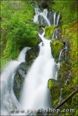 National Falls, Rogue River National Forest, Oregon