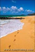 Woman walking along Secret Beach (Kauapea Beach), Island of Kauai, Hawaii