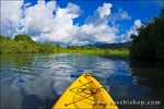 Kayak on the tranquil Hanalei River, Island of Kauai, Hawaii