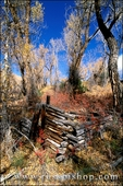 The remains of a prospector's cabin along Medano Creek, Great Sand Dunes National Park, Colorado