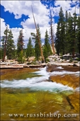 Cascade on the Tuolumne River,  Yosemite National Park, California