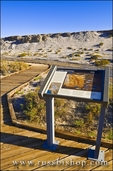 Interpretive sign and boardwalk on the Salt Creek Trail, Death Valley National Park. California