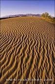 Evening light on dune patterns, Mesquite Flat Sand Dunes, Death Valley National Park. California